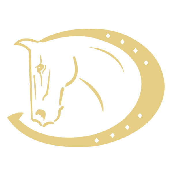 Vielseitigkeitschabracke Geri, pink von HV Polo