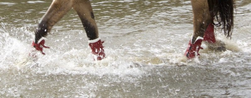 Gera Performance Gamaschen im Wasser